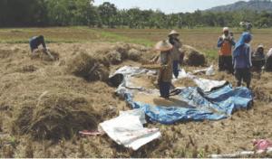 Inovasi pertanian menggunakan sumur bor