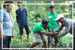 Inovasi Konversi bambu