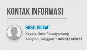 Kontak informasi desa patanyamang
