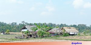 pembentukan desa baru ( updesa.com )