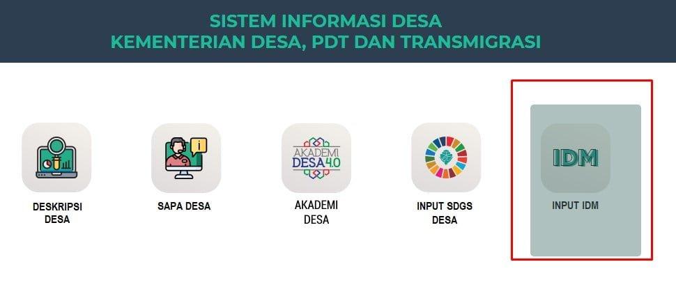 input idm 2021